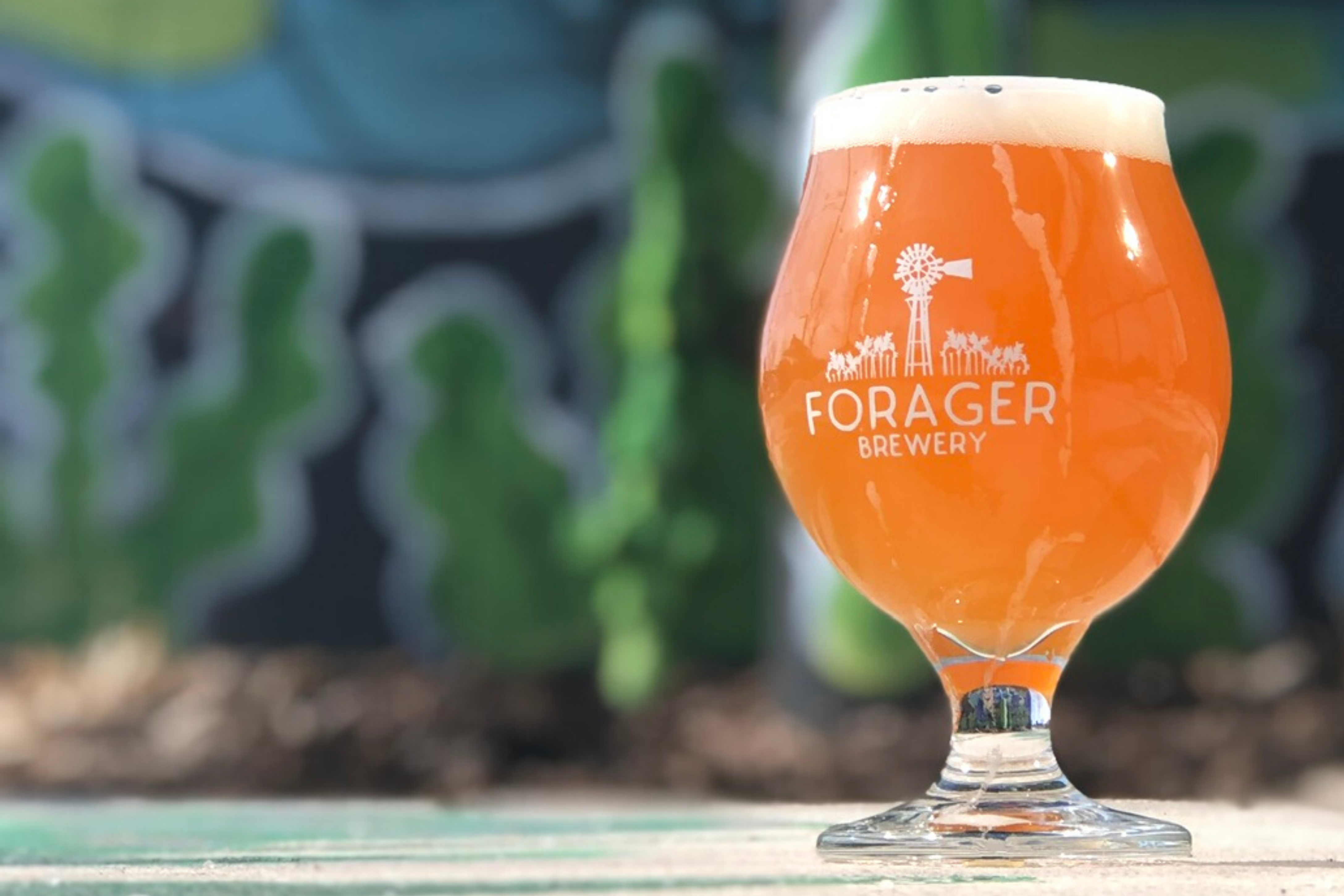 Restarurants Open Christmas Eve And Day 2020 Rochester Mn Restaurant and Brewery| Rochester, Mn | Forager Brewing Company